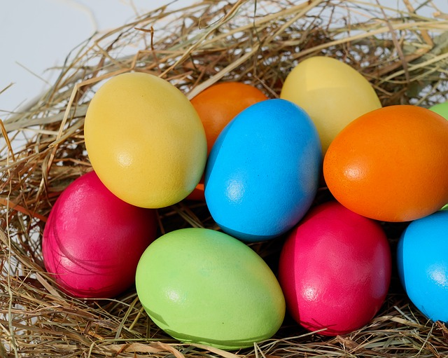 PHOTO - easter eggs and a nest